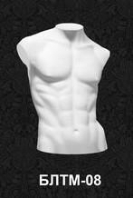 Манекен-торс для нижнего белья мужской 08
