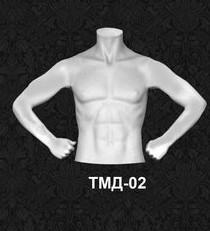 Манекен-торс для одежды  мужской ТМД 02