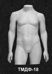 Манекен-торс для одежды  мужской ТМДФ 18