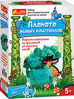 Ranok creative Научные игры: Сказочный лес 0362, фото 1