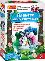 Научные игры: Цветущий сад 0361, фото 1