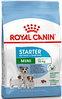 Royal Canin Mini Starter сухой корм для щенков до 2-х месяцев, беременных и кормящих сук мелких пород