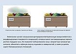 Препарат ЭкоКаталист (EcoCatalyst®), фото 8