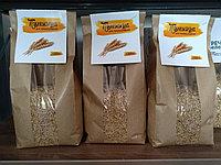 """Пшеница для проращивания Сорт """"Элита"""""""