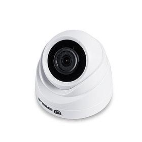 EAGLE Купольная сетевая камера EGL-NDM465