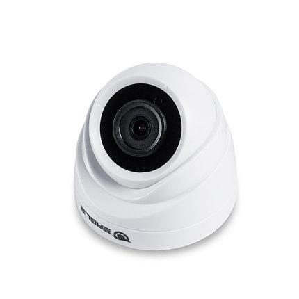 EAGLE Купольная сетевая камера EGL-NDM465, фото 2