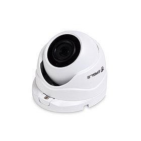 EAGLE Купольная сетевая камера EGL-NDM480