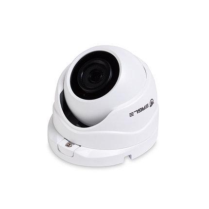 EAGLE Купольная сетевая камера EGL-NDM480, фото 2