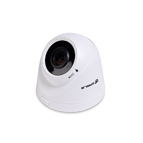 EAGLE Купольная сетевая камера EGL-NDM460
