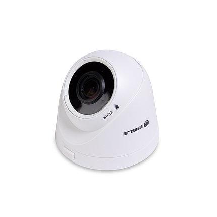 EAGLE Купольная сетевая камера EGL-NDM460, фото 2