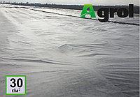 Укрывной материал Agrol - 30 (12,2 * 100)