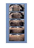 Система сухой очистки воздушных фильтров SDC-6, фото 4
