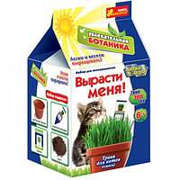 Ranok creative 15135003Р Трава для кота, фото 1