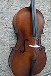 Виолончель Sonata 4/4, фото 2