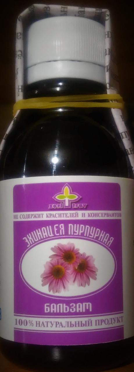 Эхинацея пурпурная, 100мл