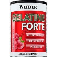 Коллагеновый белок для суставов и связок Gelatine Forte от Weider (400 гр)