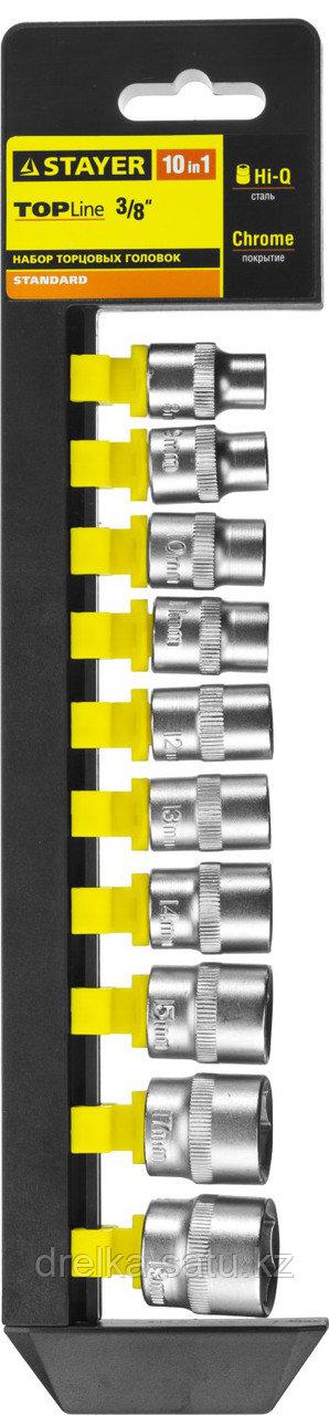 """Набор STAYER """"STANDARD"""": Торцовые головки (3/8"""") на пластиковом рельсе, 8-19мм, 10 предметов"""