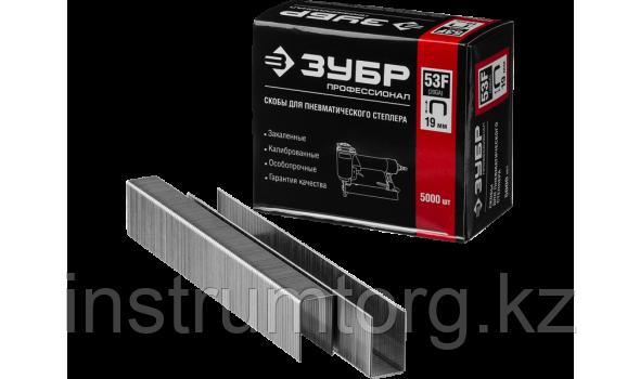ЗУБР 19  мм скобы для степлера плоские тип 53F, 5000 шт