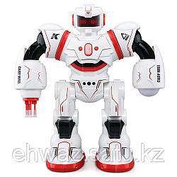 Интерактивный робот CADY WILL