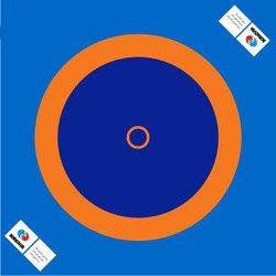 Борцовский ковер 12*12 м (с матами НПЭ 5мм)