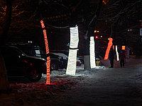 Подсветка деревьев, кустов. Обмотка, освещение деревьев светодиодной лентой, дюралайтом, фото 4