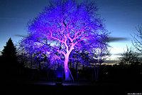 Подсветка любой сложности, подсветка зданий, подсветка деревьев, подсветка улиц, освещение дворов, улиц., фото 2