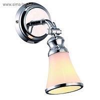"Спот ""Время"", 1 лампа, хром"