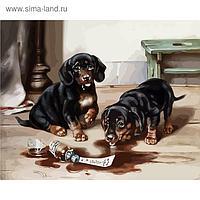 """Рисование по номерам """"Два щенка"""" 40х50 см"""