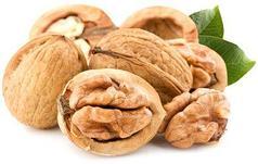 Саженцы Орехи