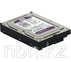 Жесткий диск Western Digital Purple, 1000 GB