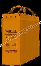 Фронт-терминальный герметичный необслуживаемый аккумулятор Tesla Power 100Ач, высокотемпературный