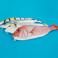 """Пенал """"Рыба"""" (много видов)"""