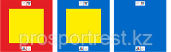 Борцовский ковер 10*10 м (с матами НПЭ 5мм)