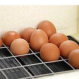 "Инкубатор ""Золушка"" на 70 яиц, фото 4"