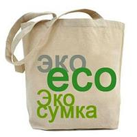 Хозяйственная эко-сумка с логотипом, фото 1