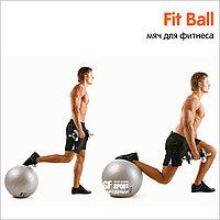 Гимнастический мяч (Фитбол) King Lion Gym Ball 65 см, фото 1