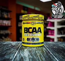 SteelPower - BCAA Recovery