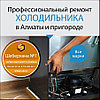 Замена шлейфа проводов холодильника Занусси/Zanussi