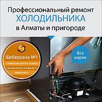 Замена двери с дисплеем холодильника АЕГ/AEG