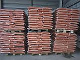 Чечевица красная шлифованная, фото 4