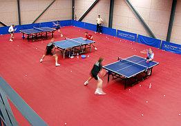 СПОРТИВНОЕ ПВХ-ПОКРЫТИЕ Gerflor Taraflex Table Tennis 4.5