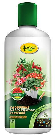 """Удобрение жидкое для всех комнатных растений Фаско """"Цветочное счастье"""" 250мл, фото 2"""