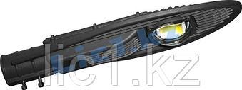 Светильник светодиодный уличный консольный  СКУ -1  50 Вт