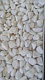 Круглая белая галька (окатыш) мраморная по 20кг, фото 9