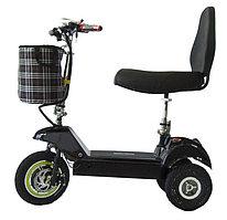 EL-Sport Трицикл SF8 Plus 48V/10Ah (Двойное сидение+спинка)