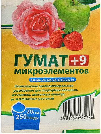 """Удобрение гуминовое """"Гумат +9 микроэлементов"""", 20 г, фото 2"""