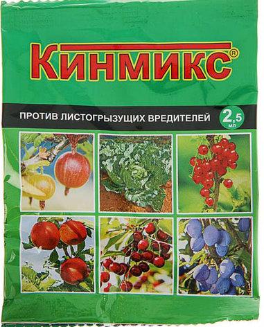 Средство для обработки плодовых деревьев от вредителей Кинмикс, пакет, ампула 2,5 мл, фото 2