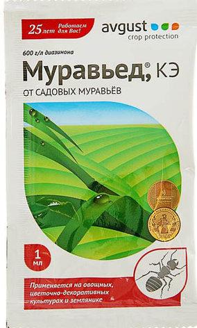 Средство от садовых муравьев Муравьед ампула в пак. 1 мл, фото 2