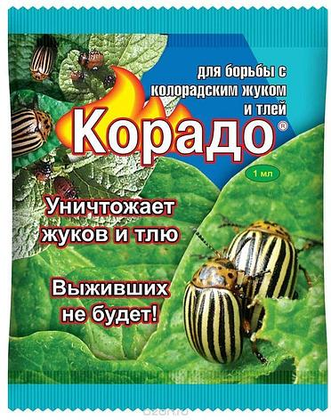 Корадо. Средство для борьбы с колорадским жуком и тлей. 1 мл., фото 2