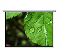 Экран настенный Mr.Pixel MSPSBB167V2